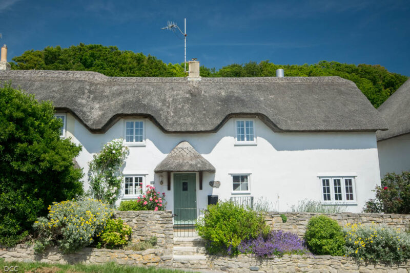 Modern thatched cottage